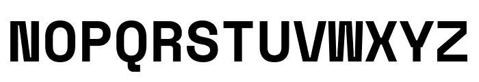Space Mono Bold Font UPPERCASE