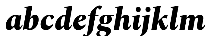 Spectral ExtraBold Italic Font LOWERCASE
