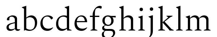 Spectral Light Font LOWERCASE