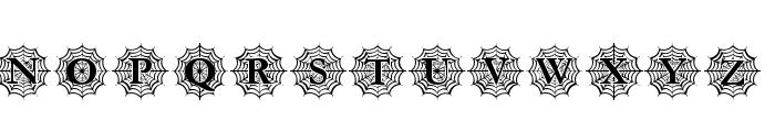 Spider_Web_Mono Font LOWERCASE