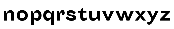 Sporting Grotesque Gras Font LOWERCASE