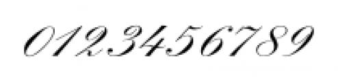 Spencerian Palmer Penmanship Pro Font OTHER CHARS