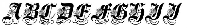 Spanish Rose Font UPPERCASE