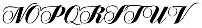Speakeasy Script Font UPPERCASE
