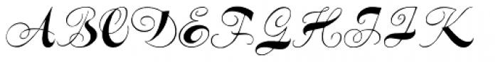 Spencerian Constancia Font UPPERCASE