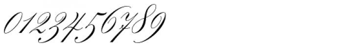 Splendid Script Font OTHER CHARS