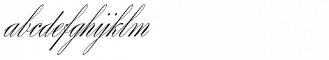 Splendid Script Font LOWERCASE