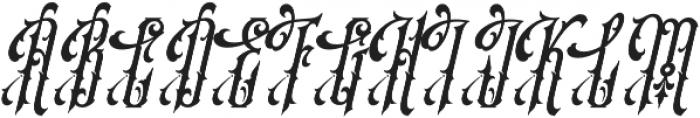 SS Amberosa Stylistic 01 Regular otf (400) Font UPPERCASE