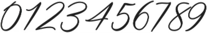 Steakfull Script Regular otf (400) Font OTHER CHARS