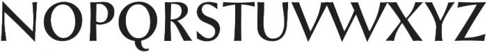 Styla Pro Regular ttf (700) Font UPPERCASE