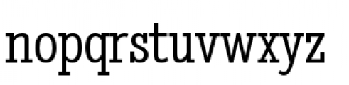 Stint Pro Condensed Book Font LOWERCASE