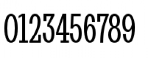 Stint Pro Ultra Condensed Book Font OTHER CHARS