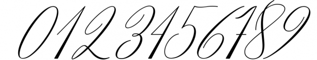 Stalingrad Classic Calligraphy Font OTHER CHARS