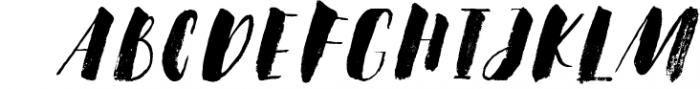 Steady Bonanza Multistyle Fonts 1 Font UPPERCASE