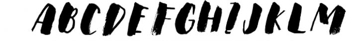 Steady Bonanza Multistyle Fonts 1 Font LOWERCASE