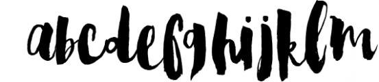 Steady Bonanza Multistyle Fonts 2 Font LOWERCASE
