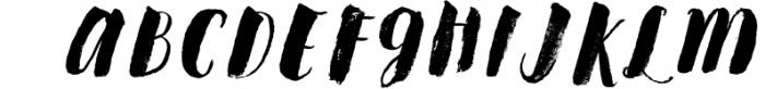 Steady Bonanza Multistyle Fonts Font UPPERCASE