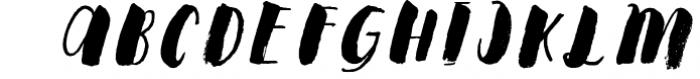 Steady Bonanza Multistyle Fonts Font LOWERCASE