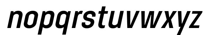 Steagisler Italic Font LOWERCASE
