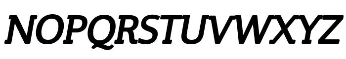 Steinem-Bold Italic Font UPPERCASE
