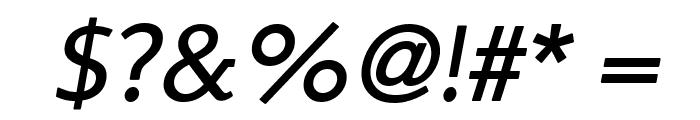Steinem-Italic Font OTHER CHARS