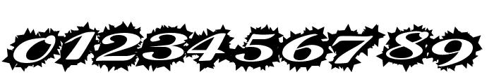 StellerScript Font OTHER CHARS