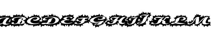 StellerScript Font UPPERCASE