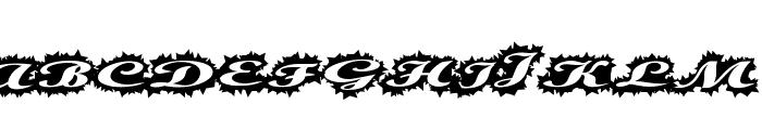 StellerScript Font LOWERCASE