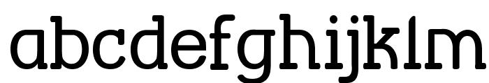 Street Corner Slab Font LOWERCASE
