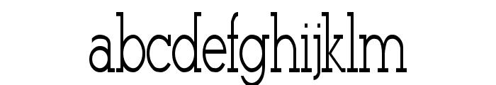 Stymie-Light Regular Font LOWERCASE