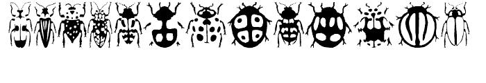 Stans Callicess Beetles Regular Font UPPERCASE