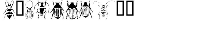 Stans Poluss Beetles Regular Font OTHER CHARS