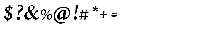 Styla Pro Bold Italic Font OTHER CHARS