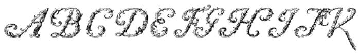 Starret Font LOWERCASE
