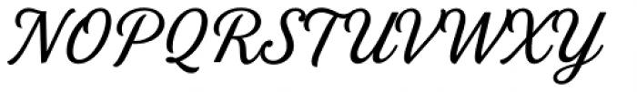 Stash Regular Font UPPERCASE