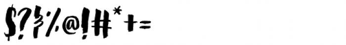 Steady Bonanza Script Font OTHER CHARS