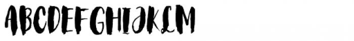 Steady Bonanza Script Font UPPERCASE