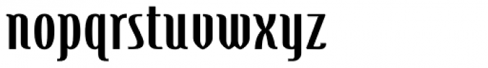 Steletto Neue Oldstyle Bold Font LOWERCASE