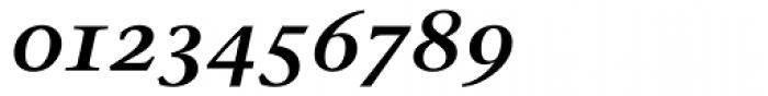 Stone Serif OS SemiBold Italic Font OTHER CHARS