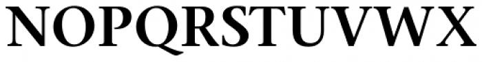 Stone Serif Pro SemiBold Font UPPERCASE