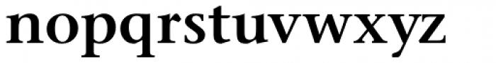 Stone Serif Pro SemiBold Font LOWERCASE