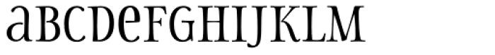 Storyteller Serif Contrast Font LOWERCASE