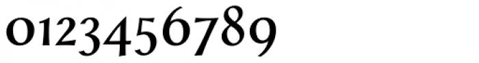 Styla Pro Font OTHER CHARS