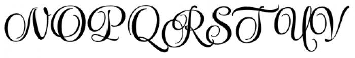 Style Swashes Font UPPERCASE