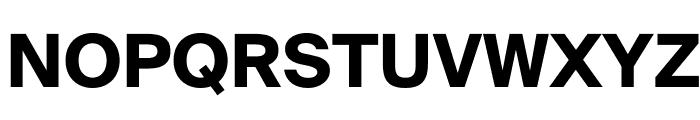 SuisseIntl Bold WebXL Font UPPERCASE