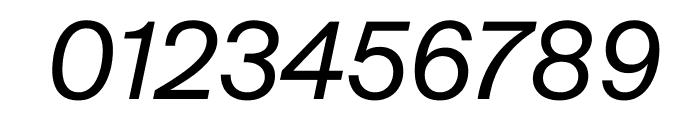 SuisseIntl RegularItalic WebXL Font OTHER CHARS