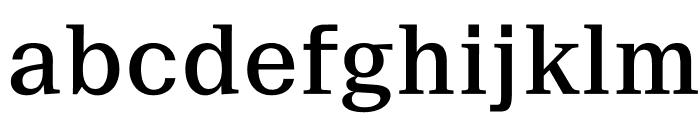 SuisseNeue Medium WebXL Font LOWERCASE