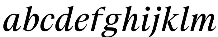 SuisseWorks RegularItalic WebXL Font LOWERCASE