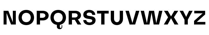 Subjectivity-Bold Font UPPERCASE