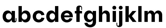 Subjectivity-Bold Font LOWERCASE